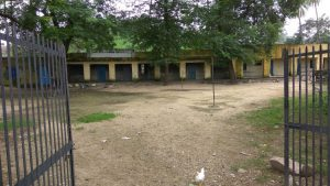 A view of school